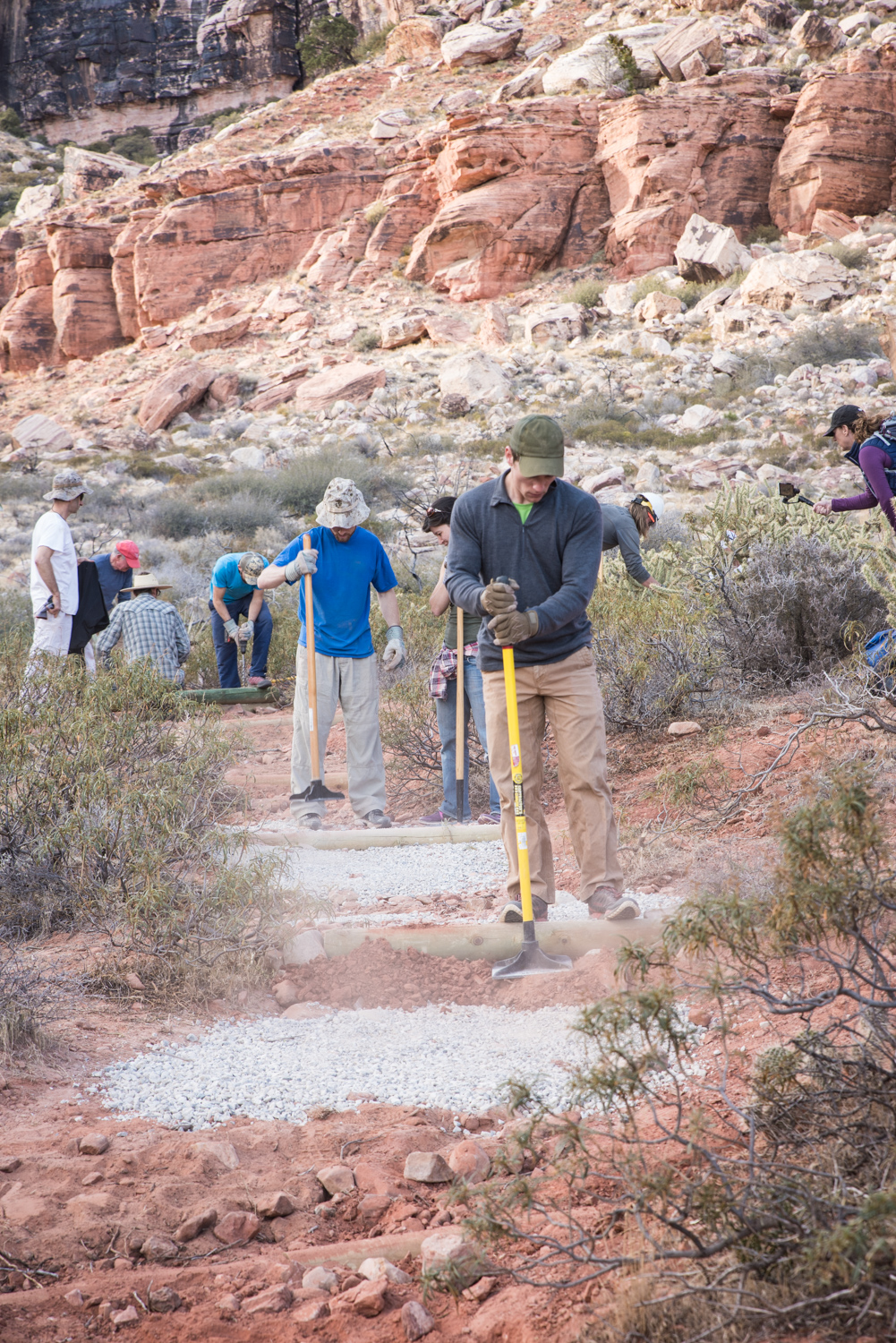 Rock Climbing in Las Vegas. Southern Nevada Climbers Coalition. Red Rock Canyon Service Project.